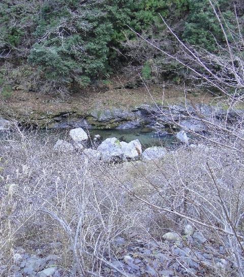 2010122406.jpg